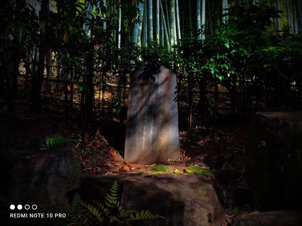 竹林の中の石碑